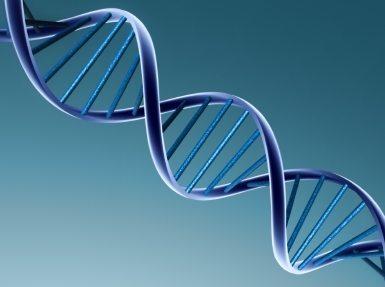 Tüp Bebek Tedavisinde Genetik Risk Taşıyanlara Önlemler